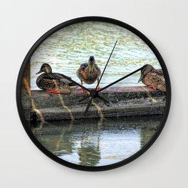 Ducks InA Row Wall Clock