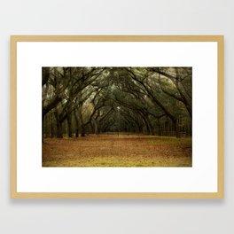 Enchanted Path Framed Art Print