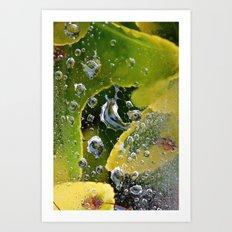PhotoYero Art Print