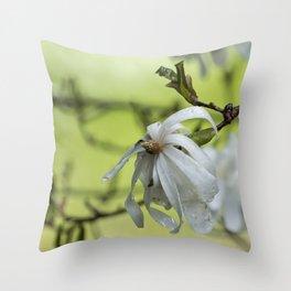 Star Magnolia Soaked Throw Pillow