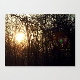 sunset. Canvas Print