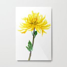 one yellow chrysanthemum Metal Print