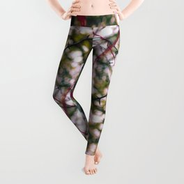 Circles of Confusion Leggings