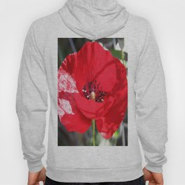 Single Red Poppy Flower  Hoody