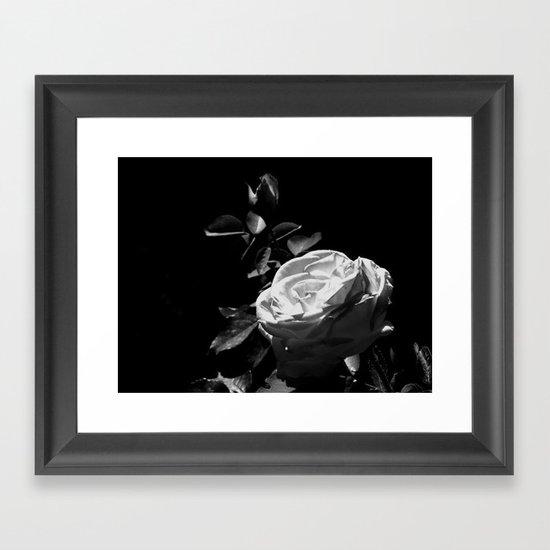 Rose - Black & White Framed Art Print