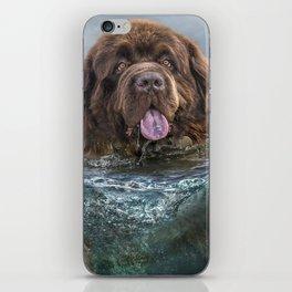 Majestic Newfoundland Dog Swimming Ultra HD iPhone Skin