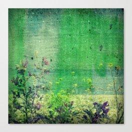 summer rain |2| Canvas Print