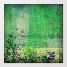 summer rain |2| Canvas Print