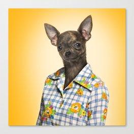 Chihuahua wearing a floral shirt Canvas Print