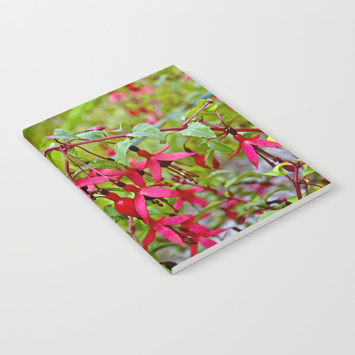 Pink Fuchsia Blossoms Notebook