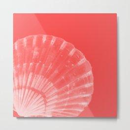 Coral Scallop Metal Print