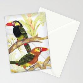 Tawny-tufted Toucanet - Selenidera Nattereri Stationery Cards