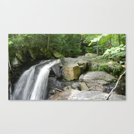 Waterfall- Adirondacks Canvas Print