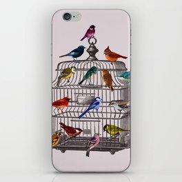 Bird cage iPhone Skin