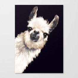 Sneaky Llama in Black Canvas Print