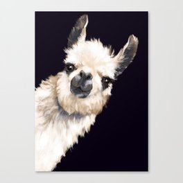 Sneaky Llama in Black Canvas Print