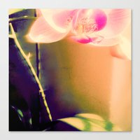 orchid Canvas Prints featuring orchid by Eva Lesko