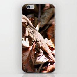 Forest Lizard iPhone Skin