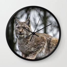 Lynx. Wall Clock