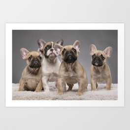 Puppy Gang Art Print