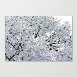 Treetop Snow Canvas Print