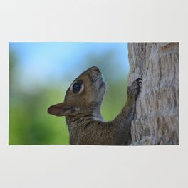 Nuts About Squirrels Rug