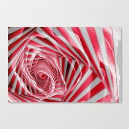 Pink Rose Spiral Canvas Print