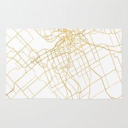 OTTAWA CANADA CITY STREET MAP ART Rug