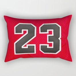 23 Rectangular Pillow
