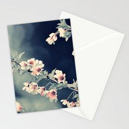 #189 Stationery Cards