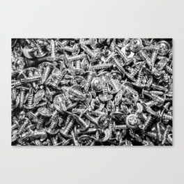 screws Canvas Print