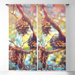 Autumn pine cones  #photography Blackout Curtain