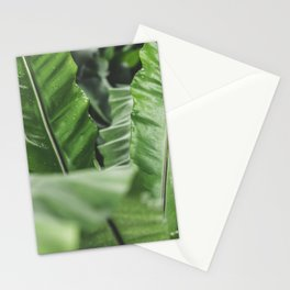 Tropical Plant Leaves Stationery Cards