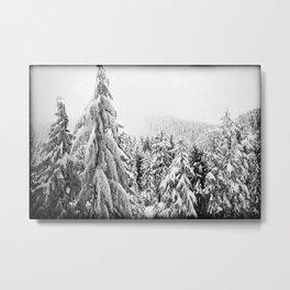 Snow Precious Metal Print