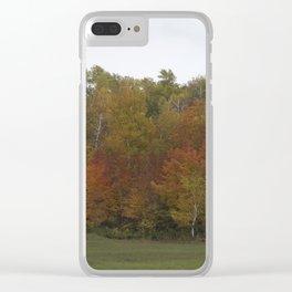 Autumn's Colors Clear iPhone Case