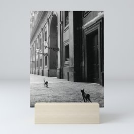 Two French Cats, Paris Left Bank black and white cityscape photograph / photography Mini Art Print