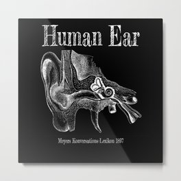 Human Ear Anatomy Metal Print