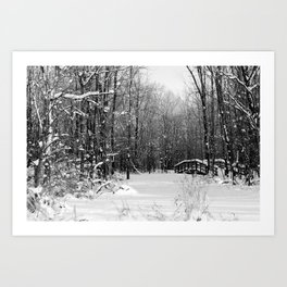Winter trees- black and white Art Print