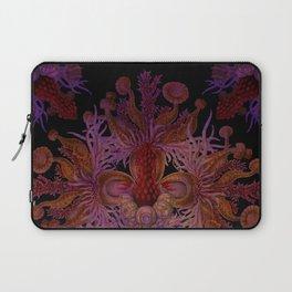 """Vintage Antique Starfish Haeckel Mandala 02"" Laptop Sleeve"