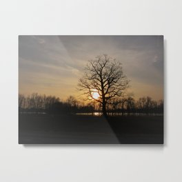 Ixonia Marsh Metal Print
