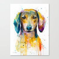 dachshund Canvas Prints featuring Dachshund  by Slaveika Aladjova