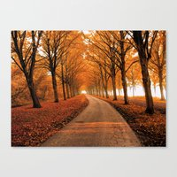 cook Canvas Prints featuring The Cook by Lars van de Goor