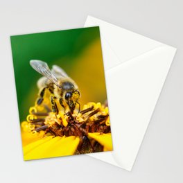 A bee on the flower Stationery Cards