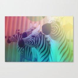 Zebra Spectrum Canvas Print
