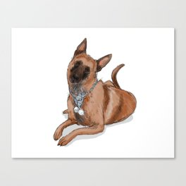 Kella, the Belgian Malinois in Blue Canvas Print