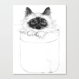 Puss in Pocket (B&W) Canvas Print
