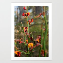 flowering plant Art Print