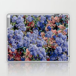 CEANOTHUS JULIA PHELPS ABSTRACT Laptop & iPad Skin