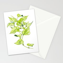 Devils Ivy Illustration Stationery Cards