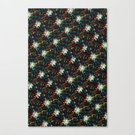 Moody Hues Canvas Print